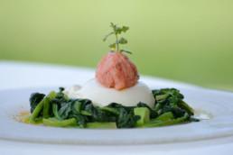 letto di verdure con mozzarella e salmone - villa la fenice
